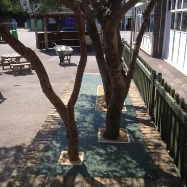 Tree Pit 2