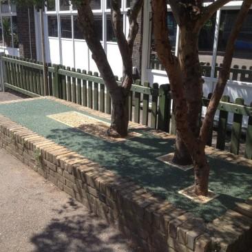 Tree pit 1